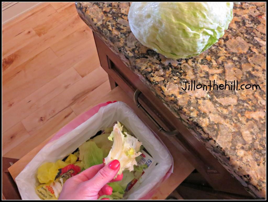 lettuce5