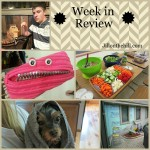 Week in Review- August 29, 2014