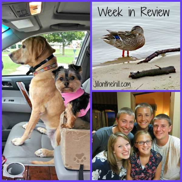Week in Review- September 12, 2014