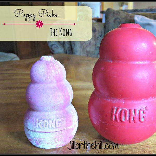Puppy Picks- The Kong