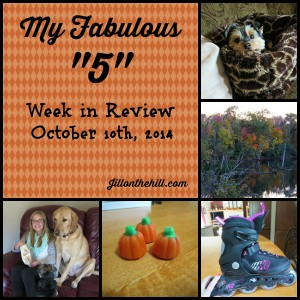 Week in Review- October 10th, 2014