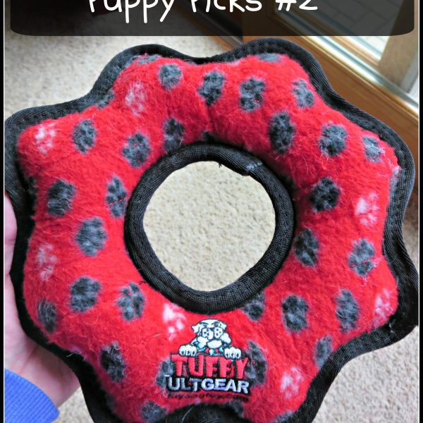 Puppy Picks #2- The Tuffy Ultimate Gear Ring