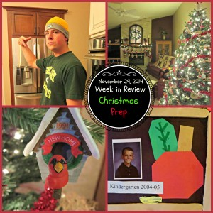Week in Review- Christmas Prep
