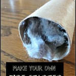 Make Your Own Fire Starters