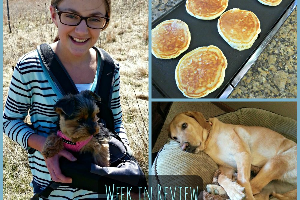 My Week in Review- 04-24-15  (5 on Friday!)