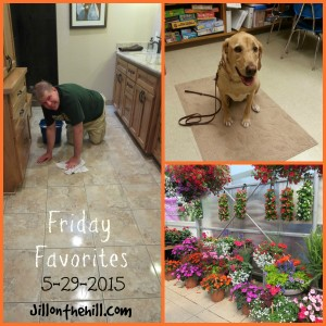 Week in Review- Friday Favorites! 5-29-2015