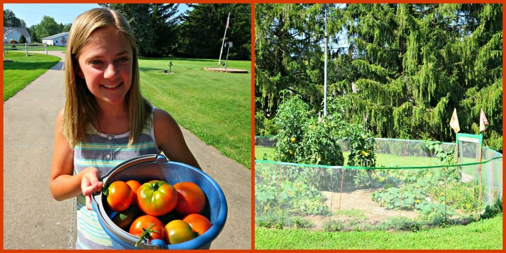 PicMonkey Collage-garden