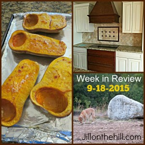 Week in Review- September 18, 2015