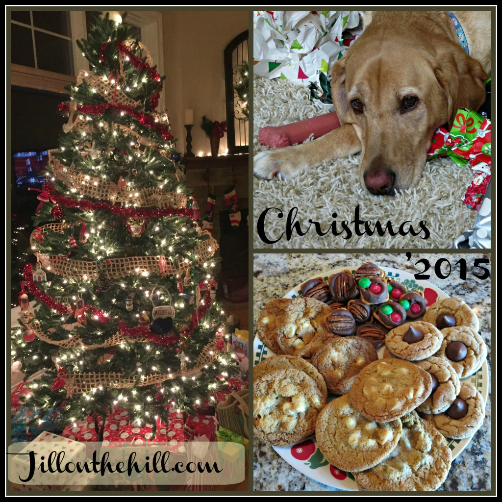 PicMonkey Collage-Christmas2015