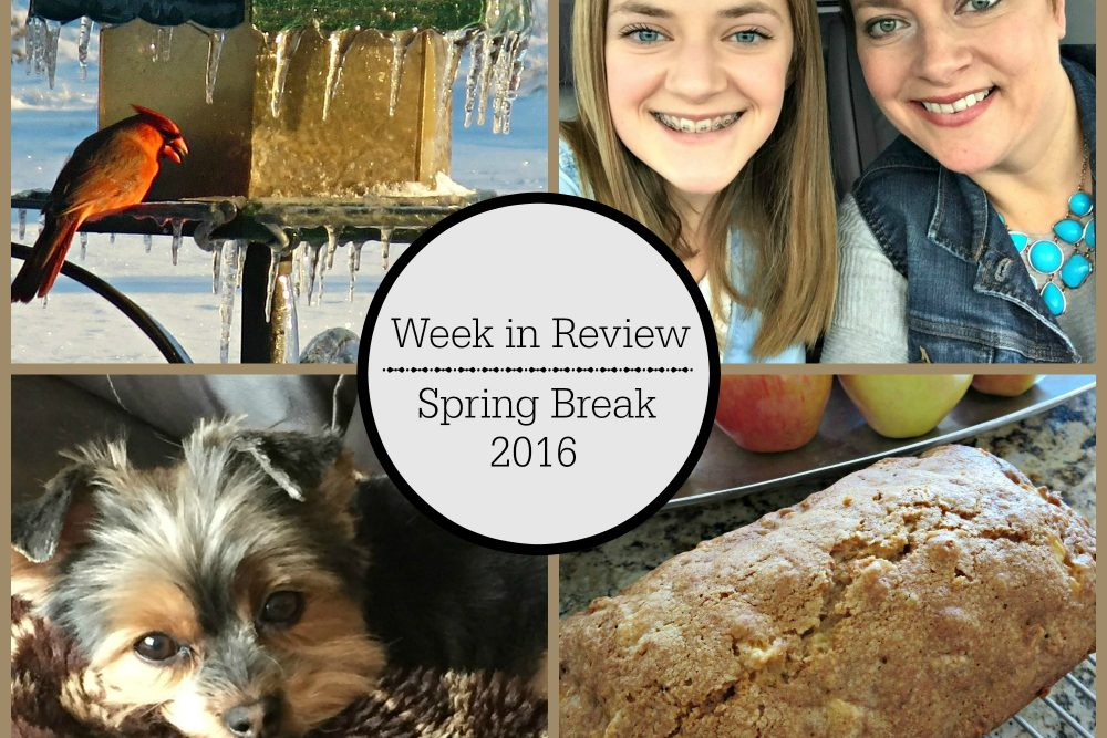 Week in Review- Spring Break 2016