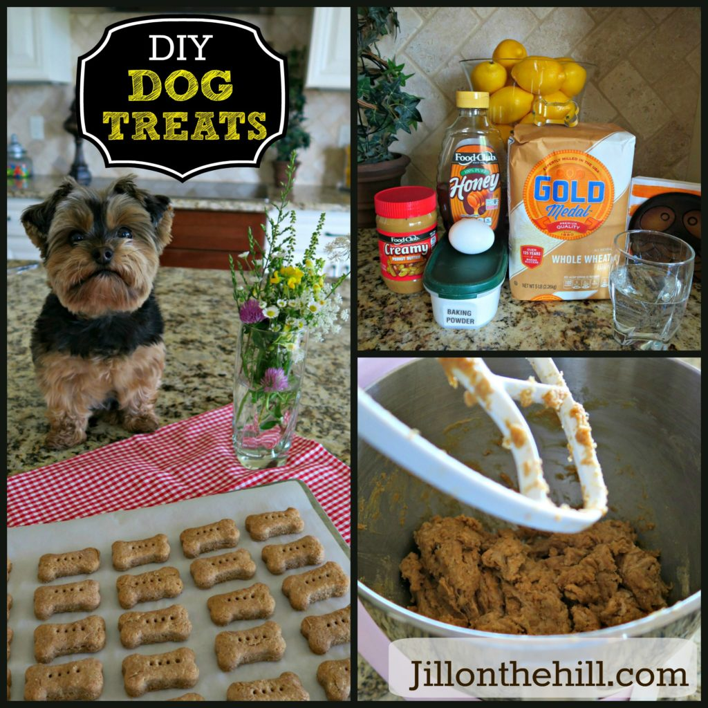DIY Dog Treats 2