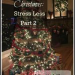 Christmas: Stress Less- Part 2  (November)