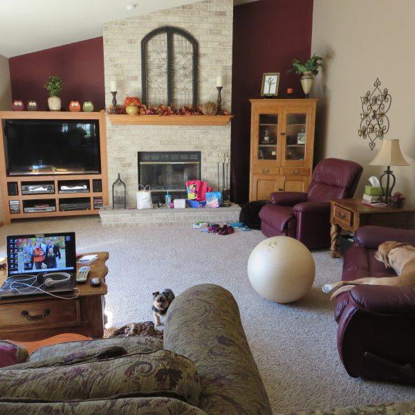 91 Day De-cluttering Challenge- The Living Room