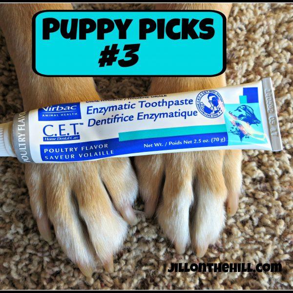Puppy Picks #3