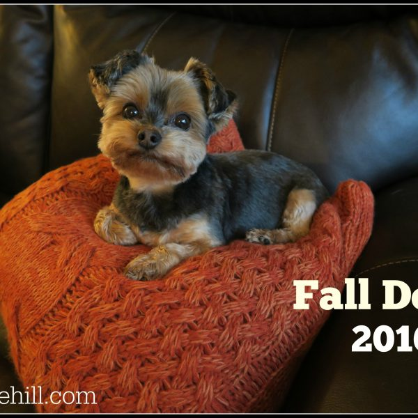Fall Decor 2016