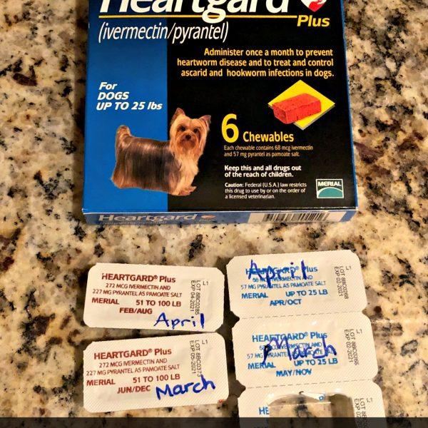 Life Hack- Dog Medicine