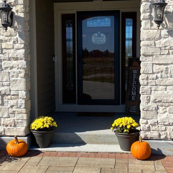 Let's Look: How We Pumpkin!!